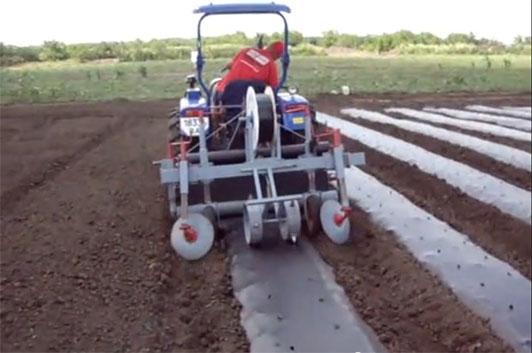 оборудование для выращивания клубники