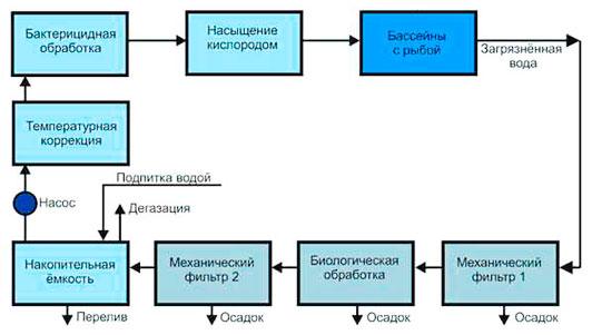 оборудование и условия разведения осетровых