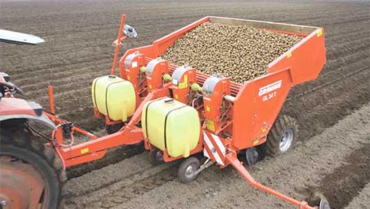 Выращивание картофеля в промышленных масштабах бизнес 59